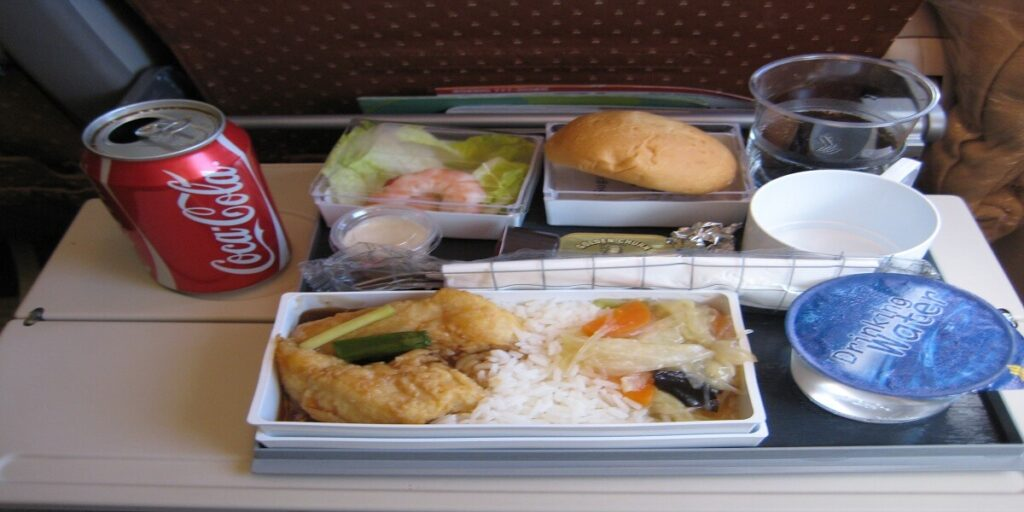 Singapore Airlines inflight meal - singapore airlines economy food review
